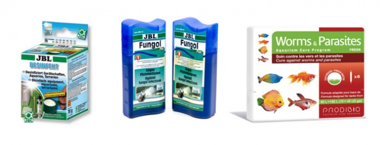 Chemicals Your Fish Need for Medication